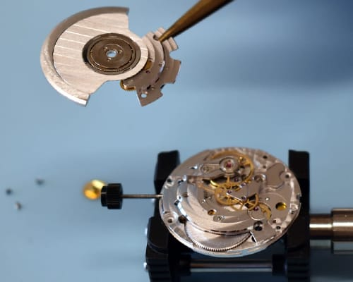 Automatic watch's rotor